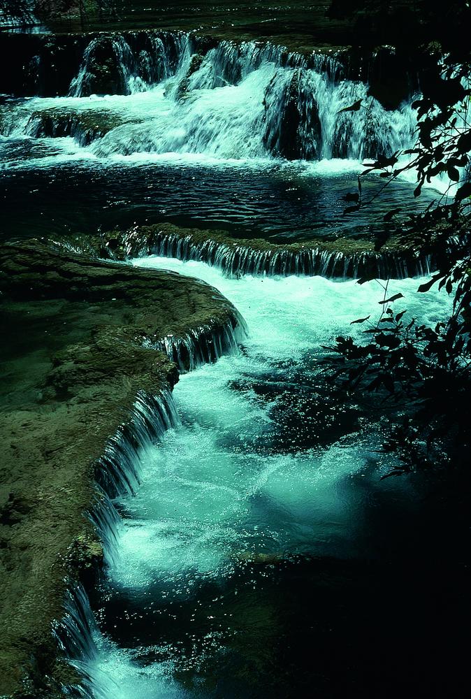 Forex grand rapids